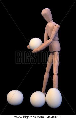 Examining Eggs