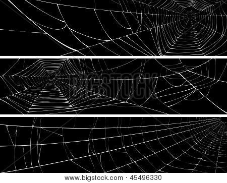 Vector silhouette of web of spider isolated on black for horizontal banner. poster