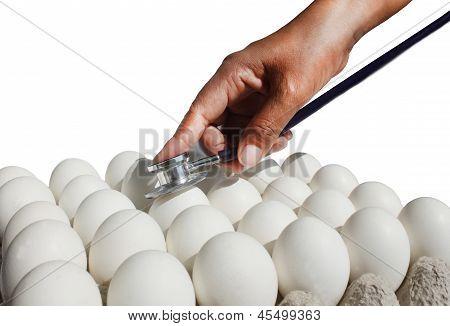 Eggs Check