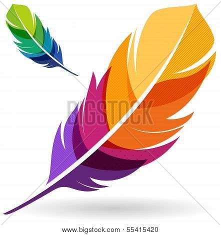 Vibrant Colorful Feathers