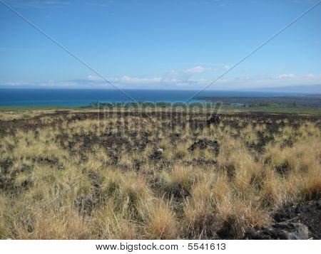 The Big Island Landscape (ocean)