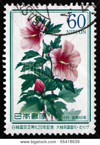 Postage Stamp Japan 1985 Rose Of Sharon, Flowering Schrub