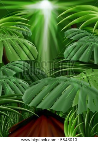 Jungle Background (front Leaf Path Included)