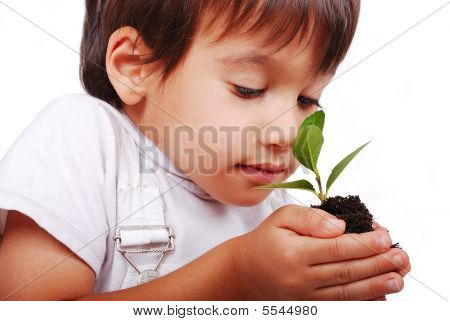 Child Holding Plant In Hands