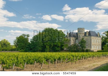 Chateau and vineyard in Margaux Bordeaux France poster