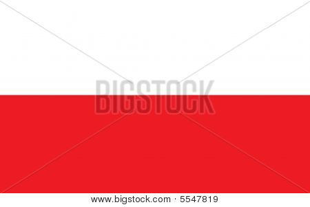 Flag of Poland part of Europe in 2D poster
