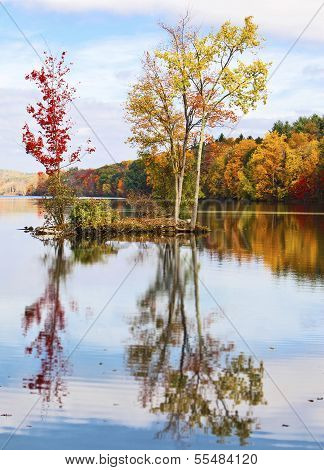 Autumn Trees Reflecting In The Water