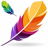 Vibrant colorful feather designs isolated on whtie background. poster