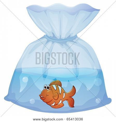 Illustration of a fish inside a pouch on a white background