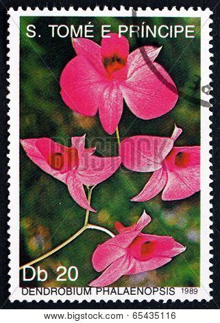 Postage Stamp Sao Tome And Principe 1989 Dendrobium Phalaenopsis, Orchid