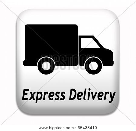 express delivery package shipping online order from internet webshop web shop icon