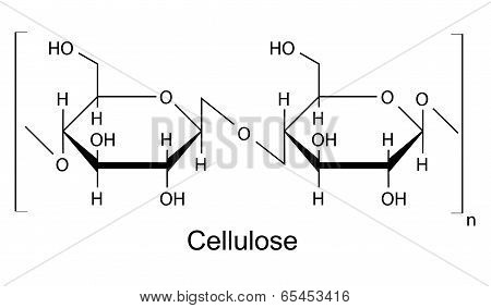 The structural chemical formula of the cellulose polymer, 2D illustration, vector, isolated on white background poster