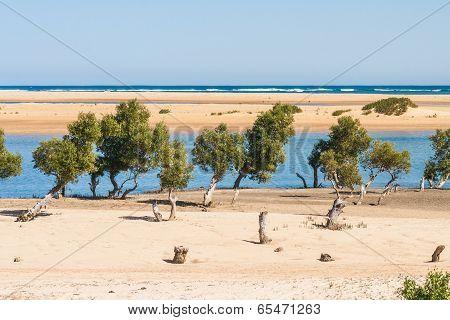Seascape Of Ifaty