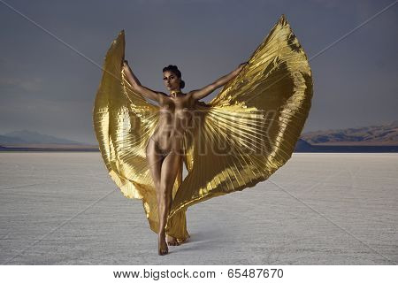 woman dancer bodypainted gold wearing bikini