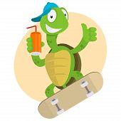 Illustration, turtle drinks juice and ride on skateboard, format EPS 8 poster