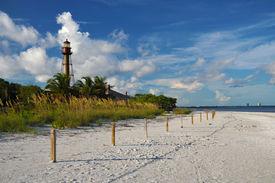 Sunny Beach Of Western Florida