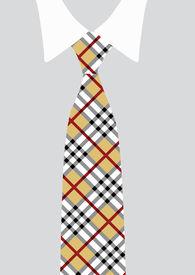 Shirt And Necktie; Detail