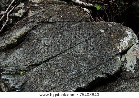 Taino Petrogylph Face