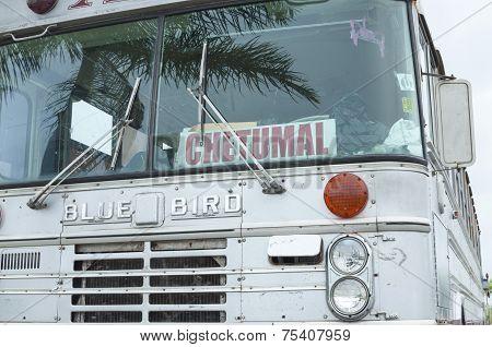 Bus To Chetumal