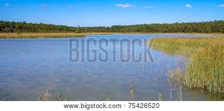 North European Natural Landscape.
