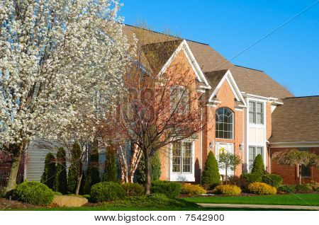 Fancy Home In Spring
