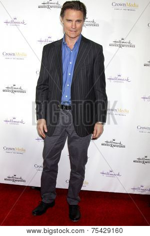 LOS ANGELES - NOV 4:  Dylan Neal at the Hallmark Channel's