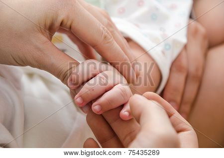 Adult's Hand Holding A Baby's Hand