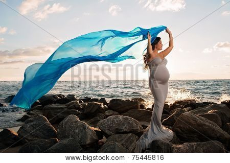 Smiling Pregnant Woman On The Beach With Blue Veil
