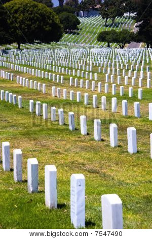 Rows Of Headstones Of Fallen Soldiers