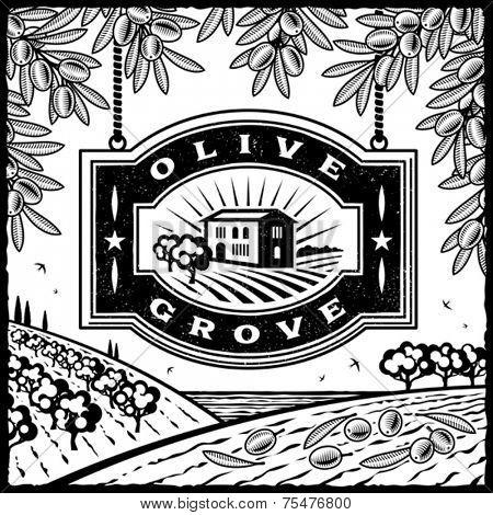 Retro Olive Grove black and white. Vector