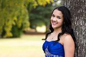 Teen girl wearing her formal Quinceanera dress poster
