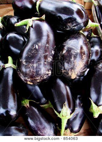 Eggplant 718