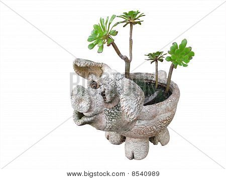 Plantpot Ornamental Pig With Succulents