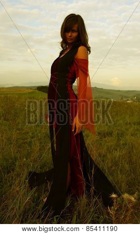 beautiful fairy girl in a historical costume with long transparent sleeves standing amids a wild mea