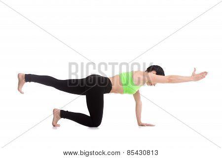 Sunbird (chakravakasana) Yoga Pose