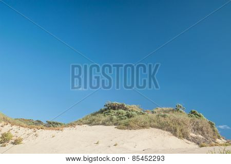 The Crest Of The Dune