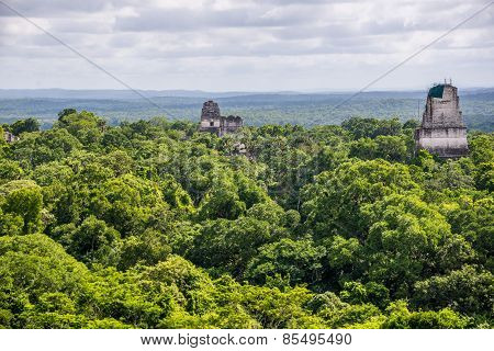 Panoramic View Of Rainforest And Mayan Ruins . Tikal National Park Traveling Through Guatemala.