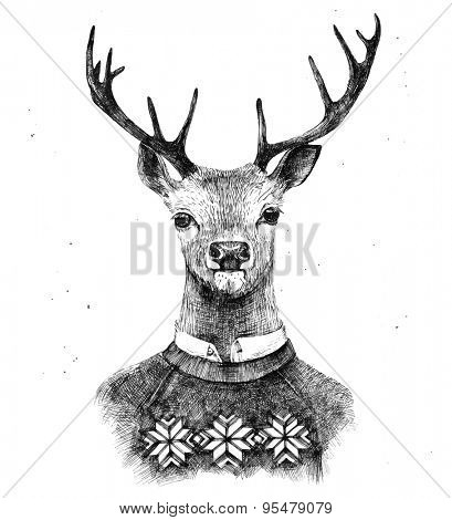 hand drawn deer portrait in knitted sweater poster