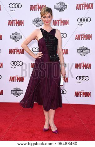 LOS ANGELES - JUN 29:  Judy Greer arrives to the