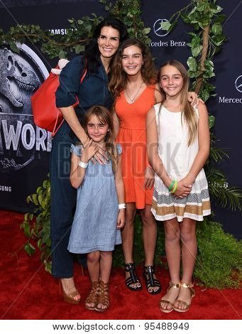 LOS ANGELES - JUN 09:  Angie Harmon, Emery Sehorn, Finley Sehorn and Avery Sehorn arrives to the