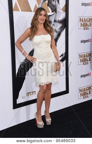 LOS ANGELES - JUN 25:  Sofia Vergara arrives to the