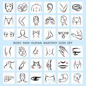Body pain human anatomy icons. Medical eye brain trauma urinary arm rheumatism physiology leg neck headache organ backache. Vector illustration poster
