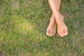 Barefoot in the grass on a sunny day poster