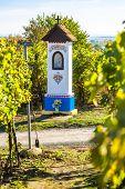 God's torture with vineyard near Nechory, Czech Republic poster
