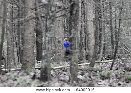 Mushroom Hunting In Wild Forest In The Morning