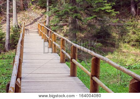 wooden bridge fenced by a wooden fence in a pine forest