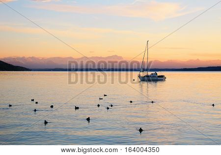 sunset at starnberg lake with view to mountain range sailboat and birds on the water