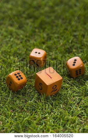 Dice on grass background, Macro, Sensitive focus, This Dice by handmade