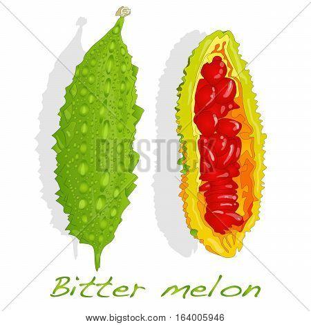 Bitter Melon Image Isolated On White Background
