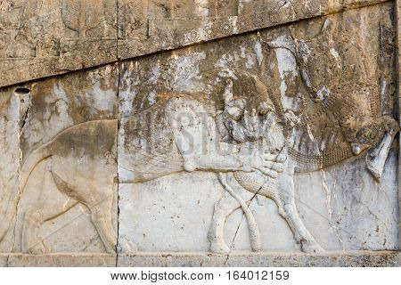Bas relief in ruins of Persepolis ancient city in Iran